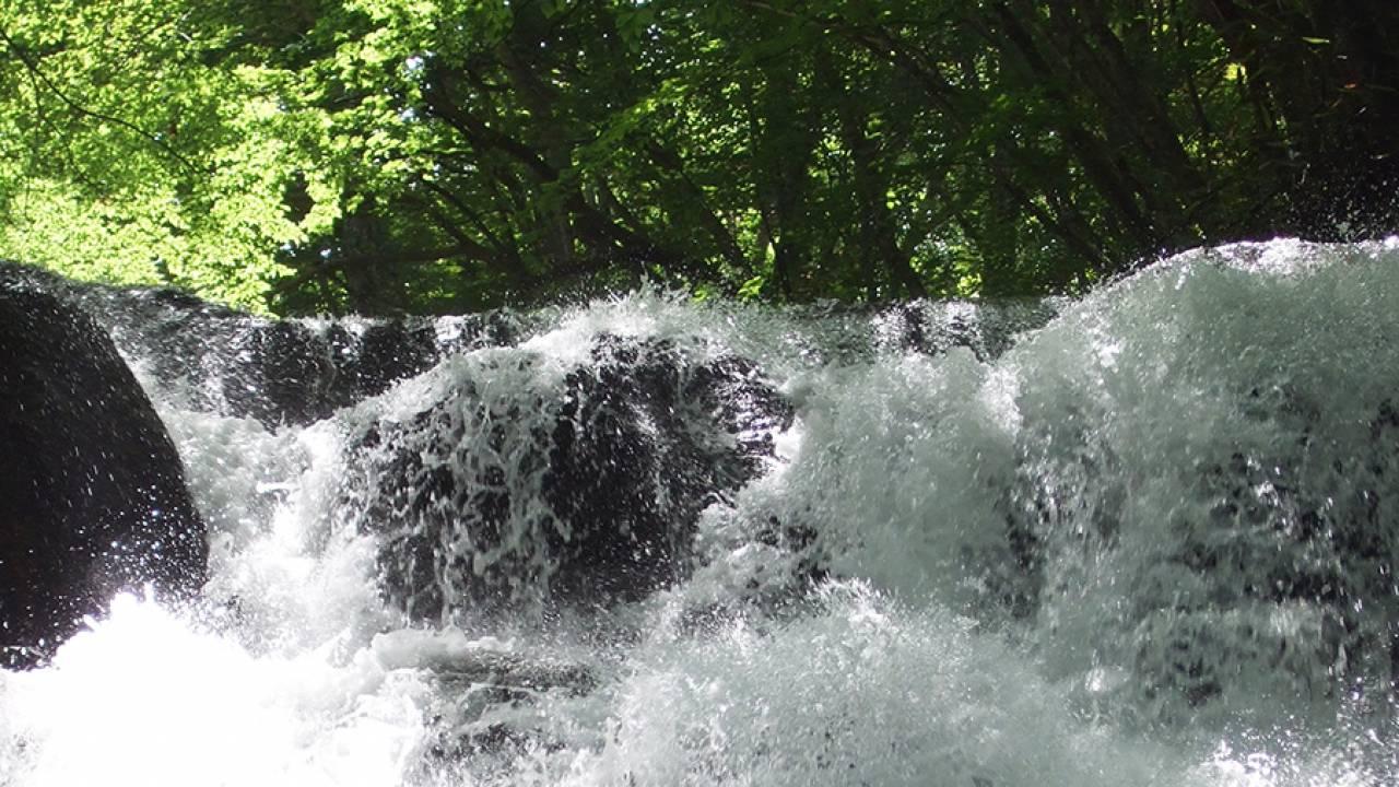 水と竜が合わさってできた「滝」は、涼し〜いだけじゃなく心理的な効果もあり