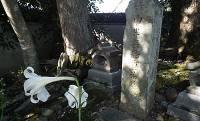 婦人のような優男? 織田信長が惚れ込んだ戦国の天才軍師「竹中重治」の逸話【後編】