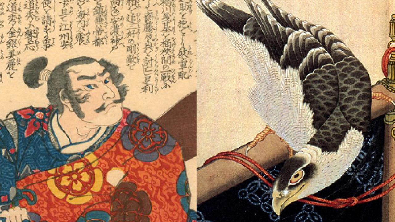 天下に号令する未来を予言?織田信長が贈り物の鷹を辞退した理由とは?