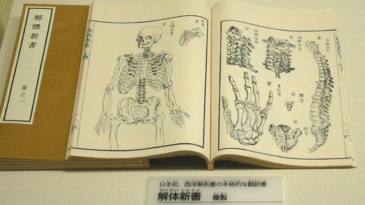 まさに蘭学の化け物!江戸時代、前野良沢が『解体新書』に名前を載せなかった理由とは