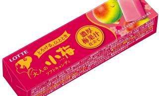 果汁ましまし!梅エキスもアップ!「大人の小梅<濃厚梅果汁仕立て>」が新発売
