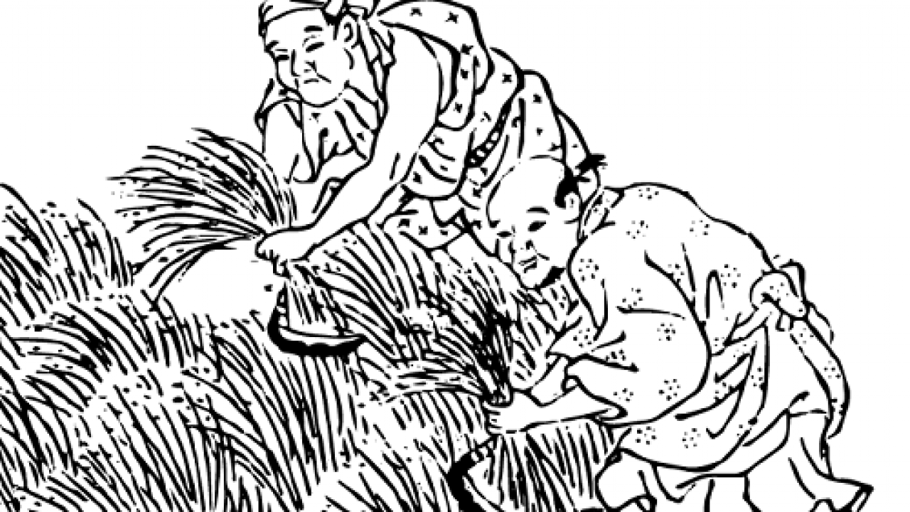 これぞ悪党の美学?『徒然草』が伝える鎌倉時代の刈田狼藉に、吉田兼好も苦笑い