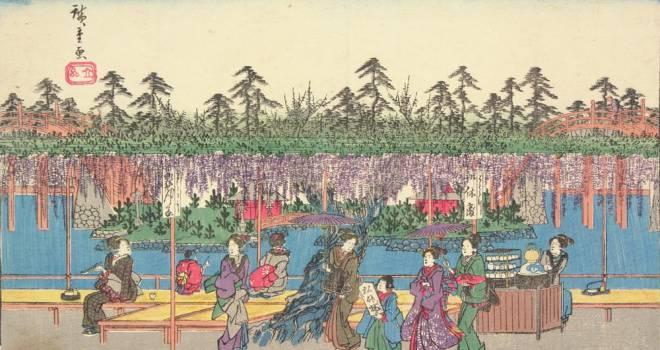 【浮世絵で見る】もうすぐ見頃!江戸っ子たちも楽しんだ「亀戸天神」の藤の花
