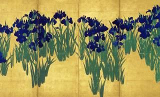 年に一度だけ!尾形光琳の大作「国宝・燕子花図屏風」が根津美術館で公開中