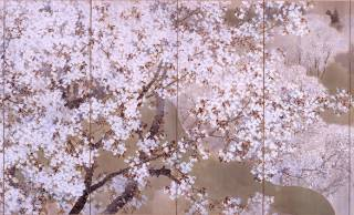 日本画でお花見!桜は一瞬だから名残惜しい、思わず見とれる桜の名画を紹介