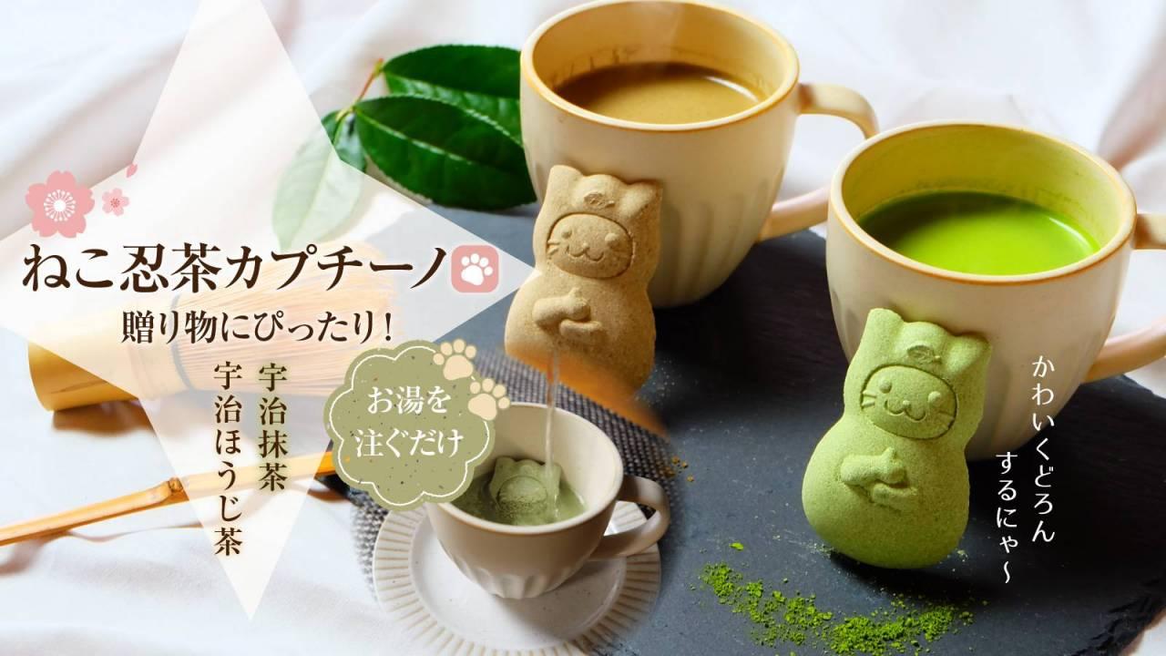 お湯を注ぐとドロンしちゃう♡抹茶・ほうじ茶を使用した「ねこ忍茶カプチーノ」が可愛すぎるよ!