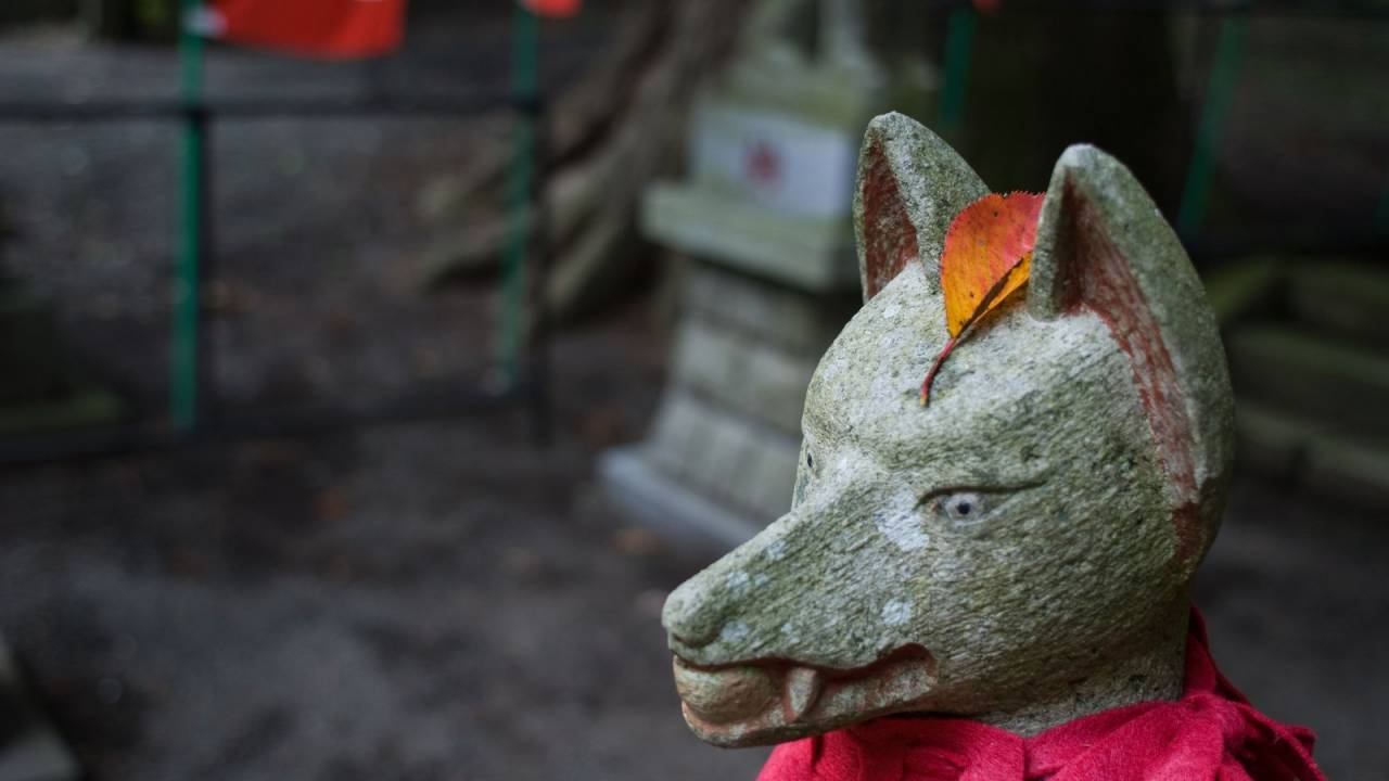 かつてお稲荷さんには「ネズミの油揚げ」を供えていた!?日本人の食とキツネの関係