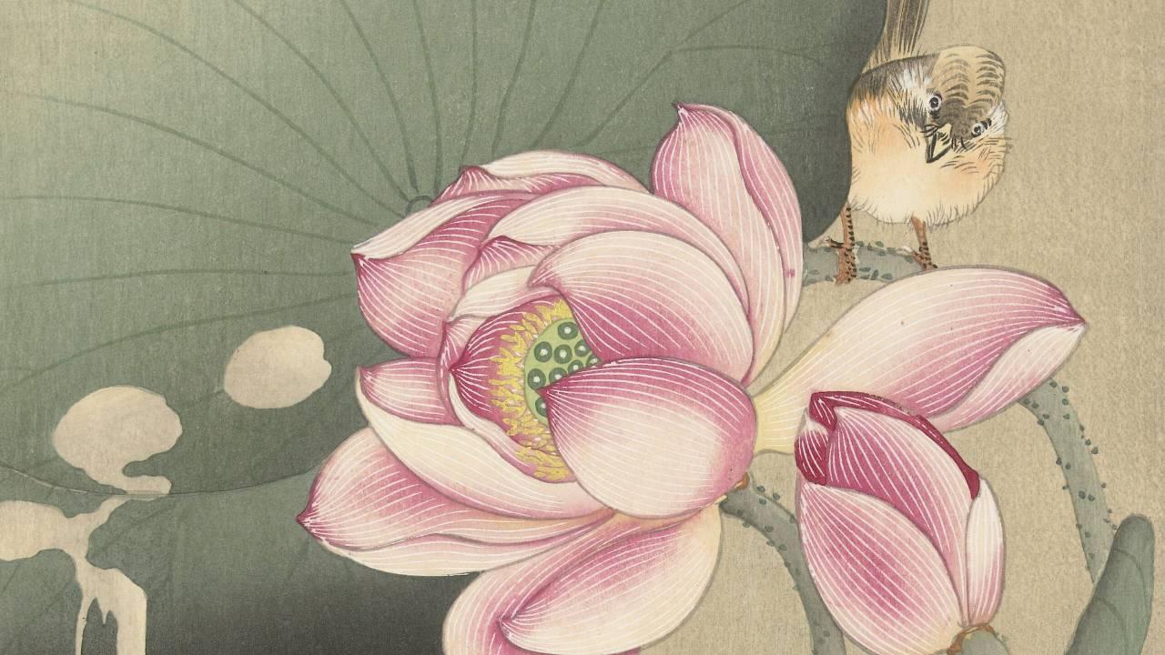 """日本人が知らない、世界で一番有名な日本の新版画家「小原古邨」の定点観測的""""蓮の絵"""""""