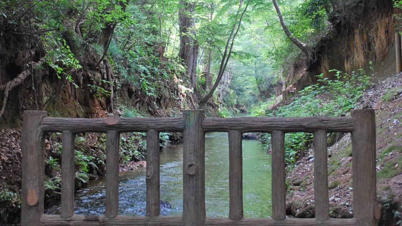 江戸開発は上水工事の歴史。飲料水を確保するために、徳川家康が行ったこととは!?