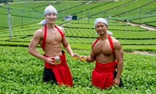 これは活用したい(笑)完全無料の写真素材集「茶畑のマッチョ」がリリース。マッスルプラス新作