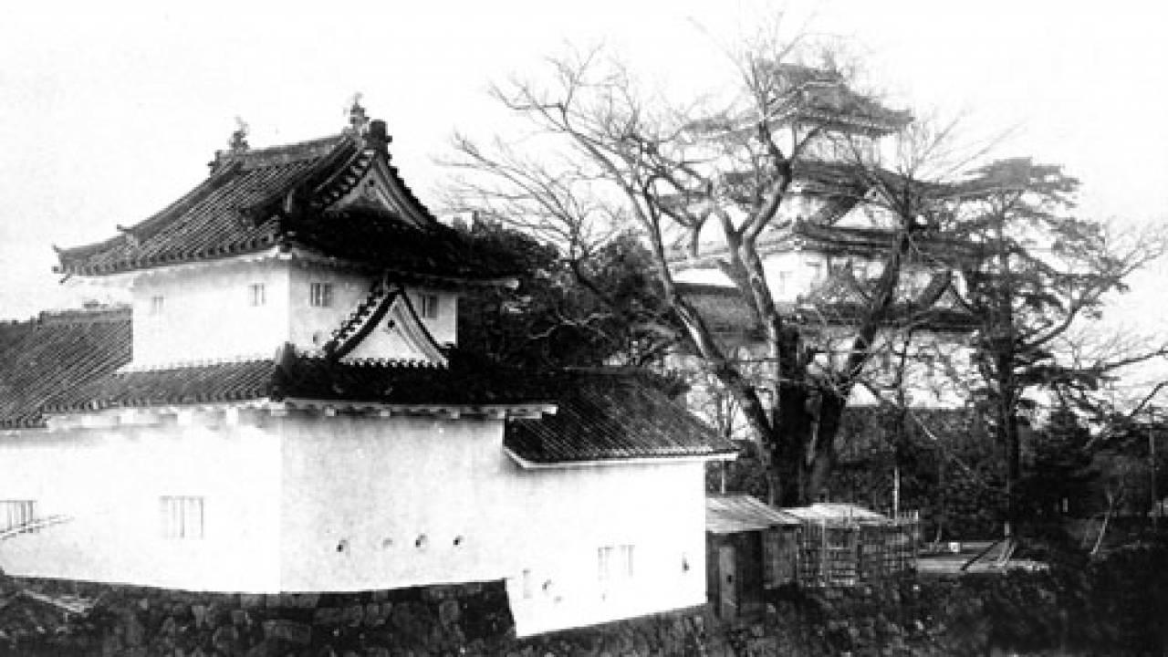 戦国大名の運命を大きく変えた大災害「天正地震」秀吉は家康への総攻撃を中止に?