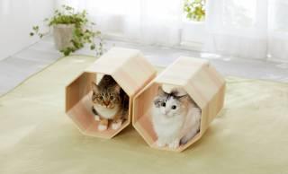 """日本伝統の""""挽曲げ""""技術で作られた「吉野桧」の猫ちゃん専用トンネルベッドが新発売"""
