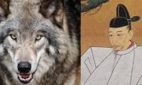 戦国時代のUMA?秀吉の大軍にただ一頭で立ち向かった羽犬伝説を紹介!