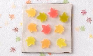 和洋5種のお茶のほのかな風味をとじこめた美しい「紅葉 琥珀糖」が秋季限定発売